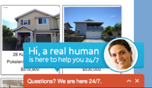 Live Chat Support Maui Real Estate